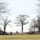 Point-to-point horse racing at Ampton. Picture: Phil Morley