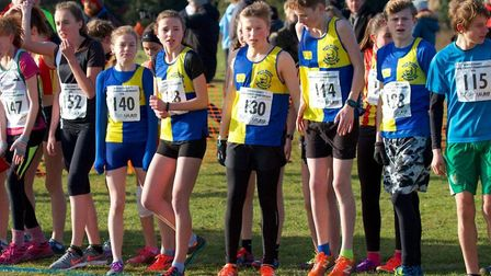 Harriers' U15 girls and boys (blue and yellow halves) on the start line at the County Cross-Country