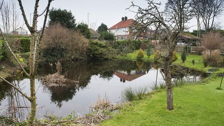 Weird Norfolk feature on the Lily Pit, Beccles Road, Gorleston.Picture: Nick Butcher