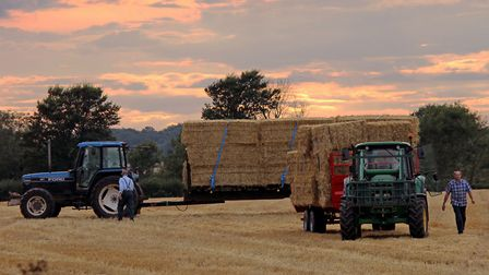 Harvest time. Picture: Peter Dent / iwitness24