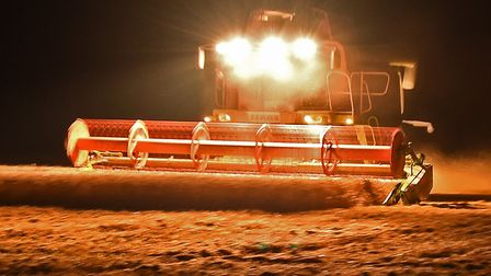 Harvesting at night to beat the bad weather. Picture: Brian Shreeve / iwitness24