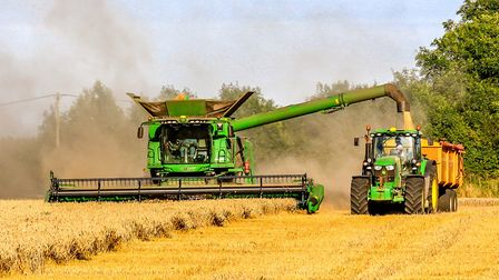 Harvesting wheat and making the dust fly on the outskirts of Fakenham. Picture: Richard Brunton / iw