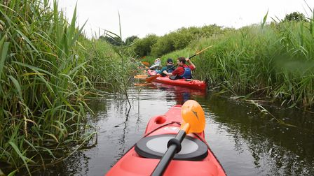 Kayaking on the Broads. Picture: Nick Butcher