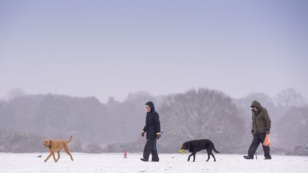 Dog walkers braving cold conditions. Picture: Nick Butcher
