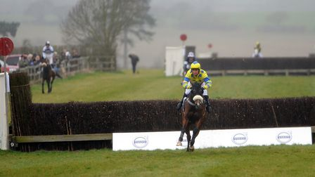 Point-to-point racing returns to Horseheath this weekend. Picture: Phil Morley