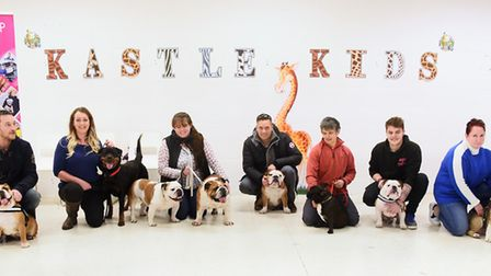 The contestants in the doggy auditions for Legally Blonde at the Theatre Royal. From left, Jonathan