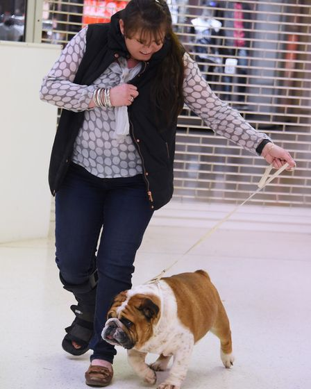 Lexi Davidson with Wallie in the doggy auditions for Legally Blonde at the Theatre Royal. Picture: D