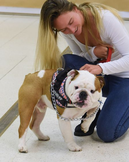 Bulldog Dr Watson with dance captain and actress Helen Petrovna in the doggy auditions for Legally B