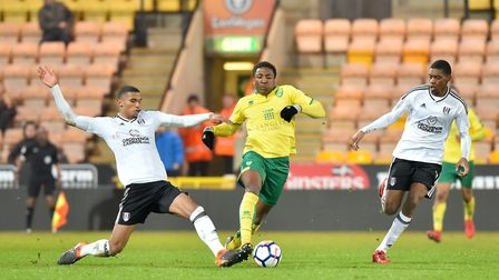 Norwich City U23's in action against Fulham U23's at Carrow Road.Picture: Nick Butcher