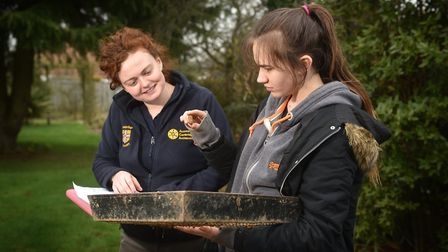 Access Cambridge (University) Archaeological dig at Brundall. Framlingham Earl student Bethany Hould