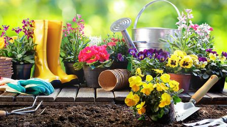 Create a good first impression by getting to grips with your garden, says Louis de Soissons from Sav
