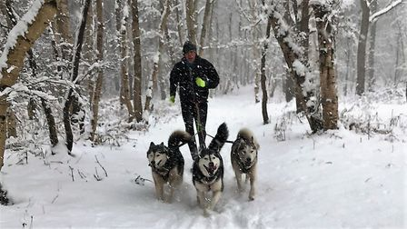 Neil Featherby out with his dogs on a training run. Picture: Neil Featherby