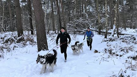 Neil Featherby out with his dogs and his running group. Picture: Neil Featherby