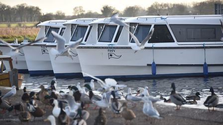 Broads National Park. Potter Heigham. Picture: ANTONY KELLY