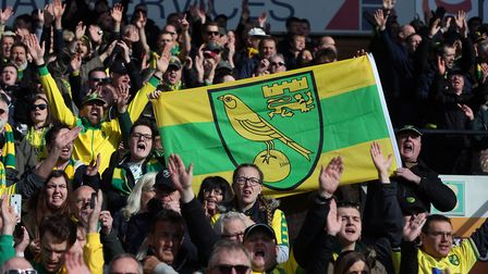 The Norwich fans could proudly hold the Norwich City flag aloft thanks to Timm Klose's late goal. Pi