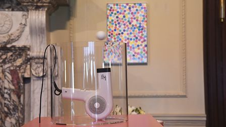 Damien Hirst's work is now on display at Houghton Hall. Picture: Ian Burt