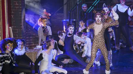 Dereham Theatre Companys youth division (DOSYTco) brought Andrew Lloyd-Webbers classic Cats to the t