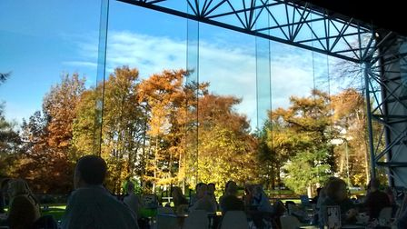 Got a spectacular Autumnal view today from the Modern Life Café in Sainsbury Centre for Visual Arts