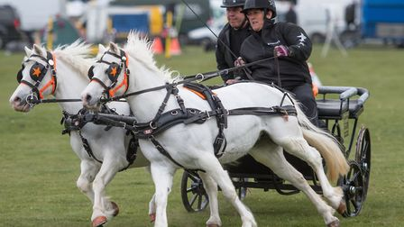 The East Anglian Game and Country Fair at the Euston Estate near Thetford. British Scurry and Trials