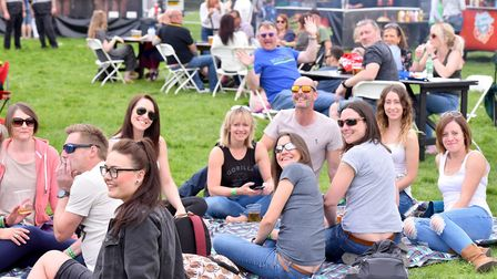 Music lovers enjoy the first ever Norwich Fake Festival at Eaton Park.Picture: Nick Butcher