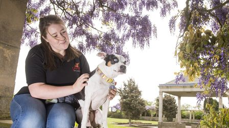 Danielle Taylor with Snoop the dog enjoy the fine weather in Waterloo Park, Norwich.Picture: Nick Bu
