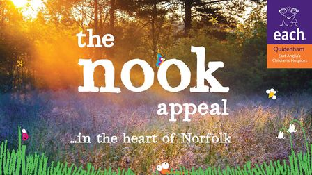 The logo for the nook appeal