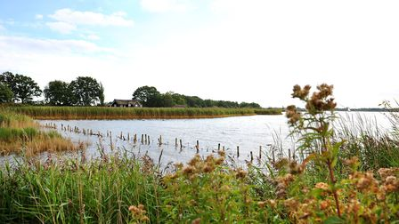 General view of Hickling Broad.Picture: James Bass