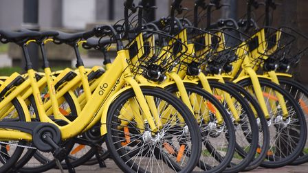 ofo bikes on Prince of Wales Road. Picture: DENISE BRADLEY