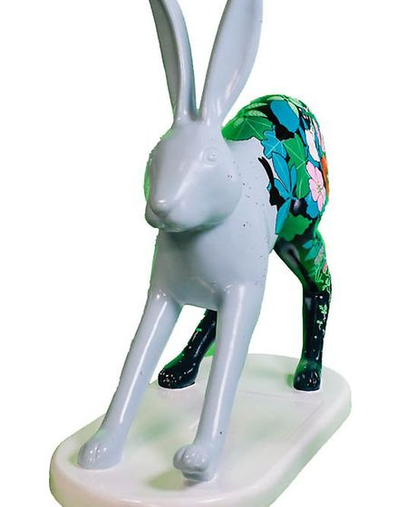Pensthorpe Natural Park's leveret Star Gazer which has been created for the GoGoCreate project which