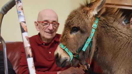 Miniature donkey one-year-old Alfie visits the residents at Two Acres Nursing Care Home at Taverham,