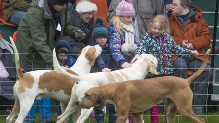 The 2018 East Anglian Game and Country Fair taking place on the Euston Estate. The Suffolk Hunt .Pho