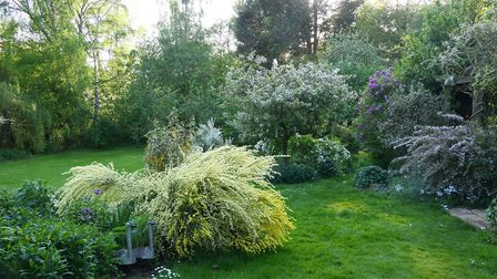 The Dersingham Open Gardens and Art Trail will take place on Sunday, May 27 and Monday, May 28. Pict
