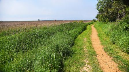 The pathway off The Green in Thornham. Picture: Ian Burt