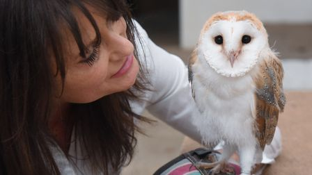 Tonya Knights with Jonny, the seven-week-old barn owl, which she uses to educate children about natu