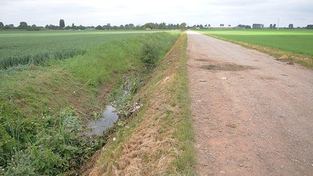 The ditch which the car rolled into off First Marsh Road. Picture: Chris Bishop