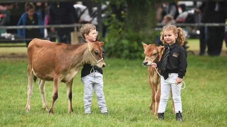 Young Handlers in the Livestock Arena at the Royal Norfolk Show. Picture: Ian Burt