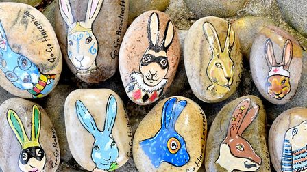 Artist Rebecca Osborne has painted 10 rocks with GoGoHares for EN and EDP readers to find.Picture: N