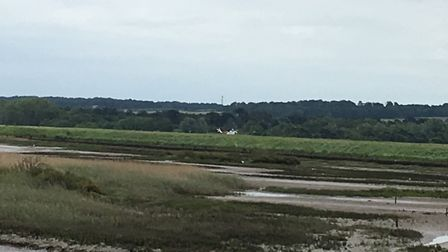 A helicopter pictured at Titchwell Marsh on Sunday, where a 75-year-old missing man was found by a p