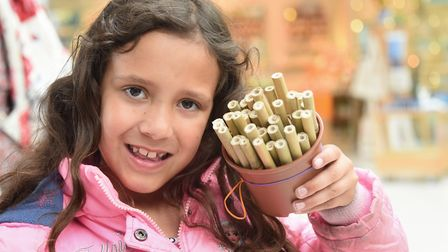 Lily D'Souza, seven, with a homemade bug hotel at the One Planet Festival. Picture: DENISE BRADLEY