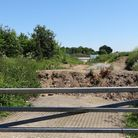 The travellers site at Bawburgh which has been closed. Photo: Archant