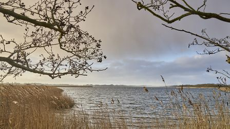 A view over Hickling Broad. Norfolk Wildlife Trust has received funding from Love the Broads for a p