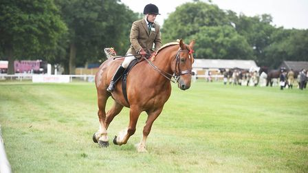 The Royal Norfolk Show day one. Picture: Ian Burt