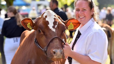 Molly Sellar from Snetterton with her Dairy Shorthorn ready for the Royal Norfolk Show 2018. Picture