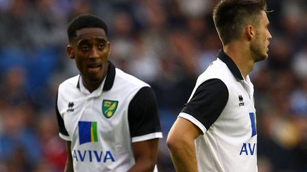 Leroy Fer and Ricky van Wolfswinkel - it never quite worked out for the pair or for Norwich City. Pi