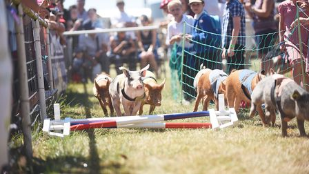 Action from the Church Farm Ham National at the Royal Norfolk Show. Picture: Ian Burt