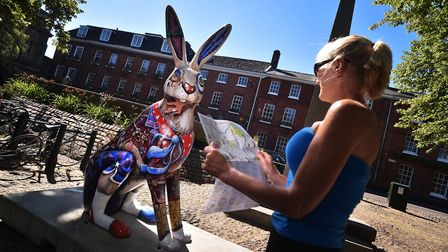 A busy first weekend for the GoGoHare trail. Yvette Widdowson, from Norwich, with Lewis the Timely H
