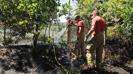 Firefghters deal with the aftermath of the scrub fire at Leziate, near King's Lynn Picture: Chris