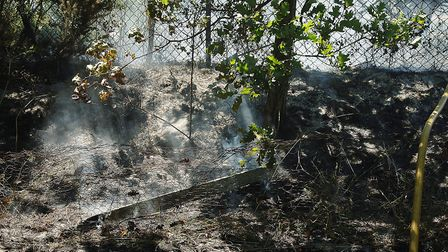 Parts of the undergrowth were still smouldering, after the blaze was brought under control Pictur