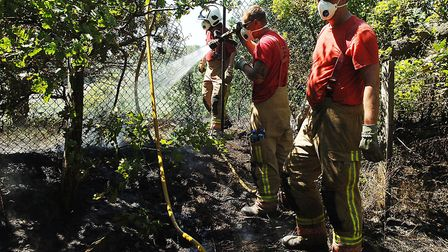 Firefighters at the scrub fire Picture: Chris Bishop