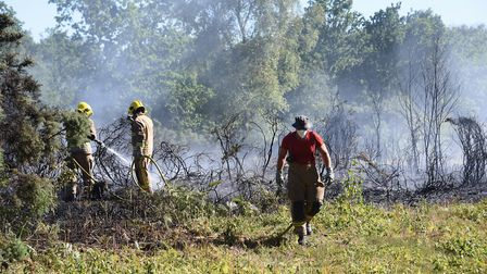 Fire fighters tackle a fire at Mousehold Heath. Picture: DENISE BRADLEY